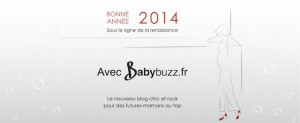 Bonne année 2014 ! Meilleurs voeux de ©BabyBuzz.fr